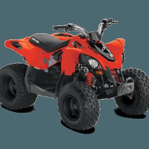 Квадроцикл BRP DS90