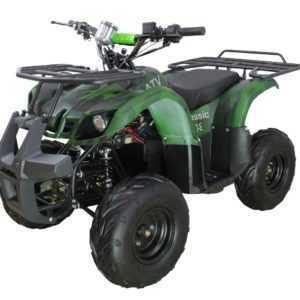 Электроквадроцикл ATV Classic 8E (1000W)