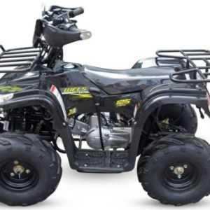 Квадроцикл Wels HS125