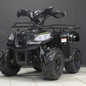 Квадроцикл Wels HS110