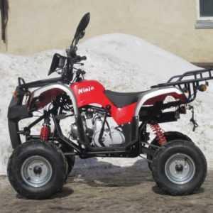 Квадроцикл ABM Ninja 110 NEW