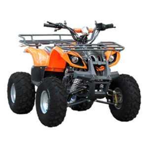 Квадроцикл BSE ATV 50cc 2T MX