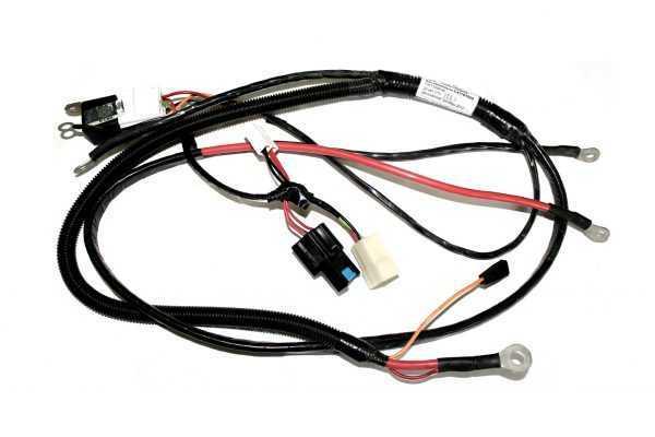 Жгут электрозапуска C41101020 купить по цене 1995 руб.