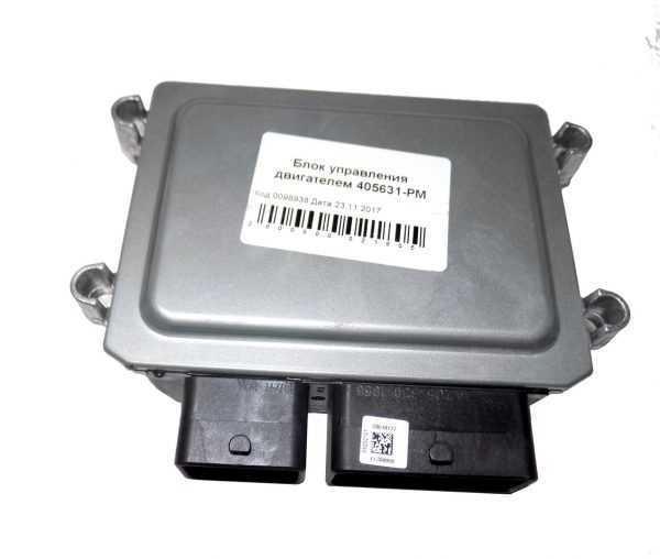 Блок управления двигателем 405631-РМ купить по цене 28979 руб.